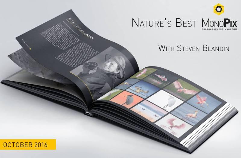 natures-best-monopix-steven-blandin