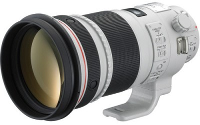Canon EF 300mm f 2-8 L IS II USM_Bird Photography