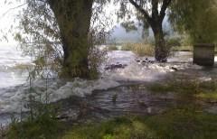 Laguna de Chapala
