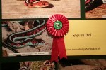 First prize for best overall display
