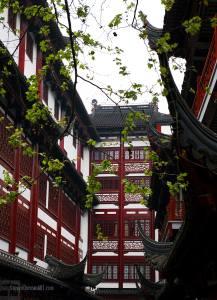 Shanghai Yu Gardens
