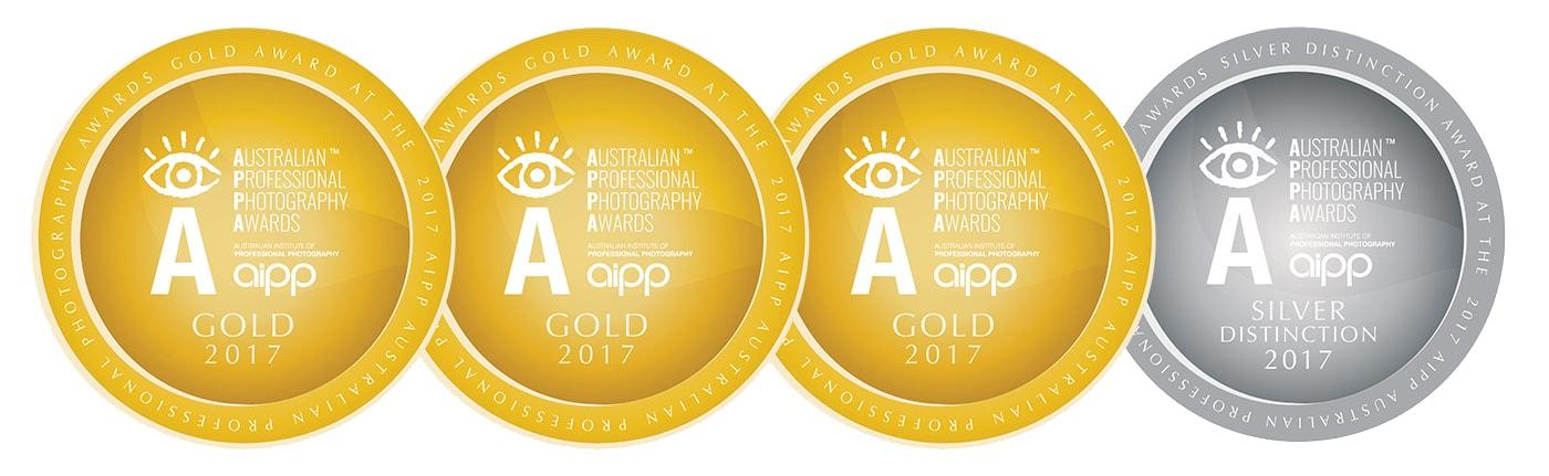2017 AIPP APPA