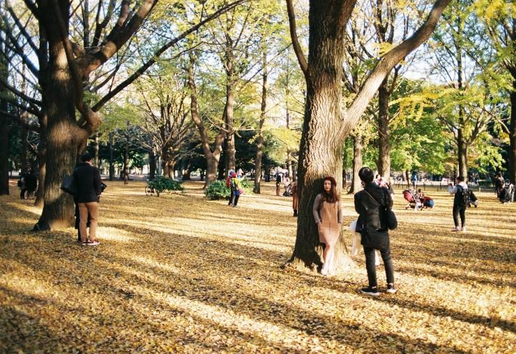 35mm Analogue Photo taken in Yoyogi Park Tokyo