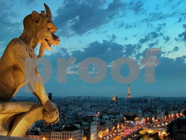 Chimera from Notre-Dame cathedral at night, Paris, France.