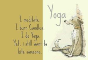 I do Yoga yet i still want to bite someone