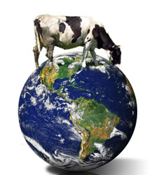 cow_planet