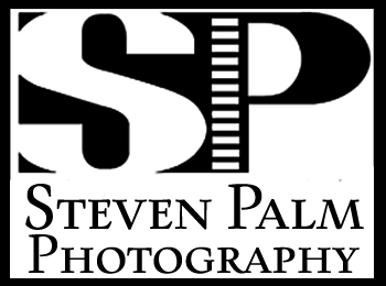 Steven Palm Photography-Tucson Wedding Photographers