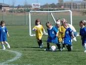 A bunch of little kids running toward a soccer ball