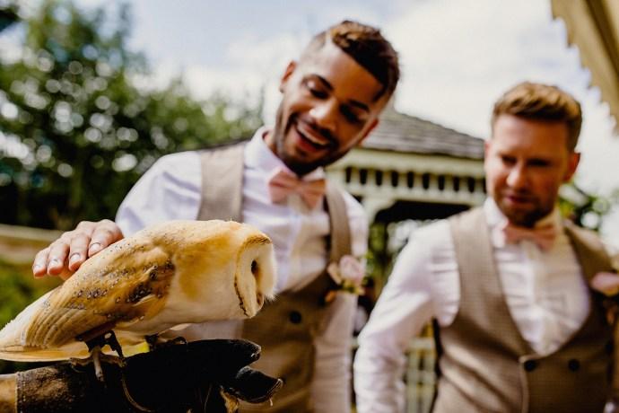 owl ring bearer from wedding