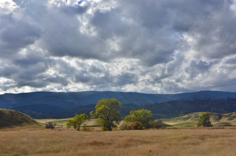 The countryside northwest of the ghost town of Newville, California. Photo by Steven T. Callan.