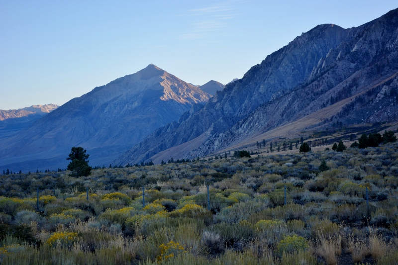 "The east side of the Sierra Nevada Mountains, just west of Crowley Lake. Crowley Lake is featured in ""Crowley Trout Opener,"" a chapter in Badges, Bears, and Eagles--The True-Life Adventures of a California Fish and Game Warden by Steven T. Callan."