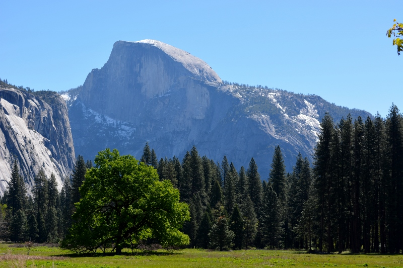 Made of solid granite, Half Dome lies at the eastern end of Yosemite Valley, in Yosemite National Park. Photo by Steven T. Callan.
