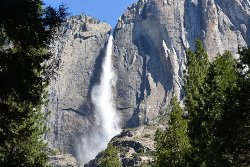 Upper Yosemite Fall at Yosemite National Park, one of the crown jewels of America's national park system. Photo by Steven T. Callan.