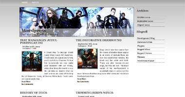 silver magazine wordpress theme