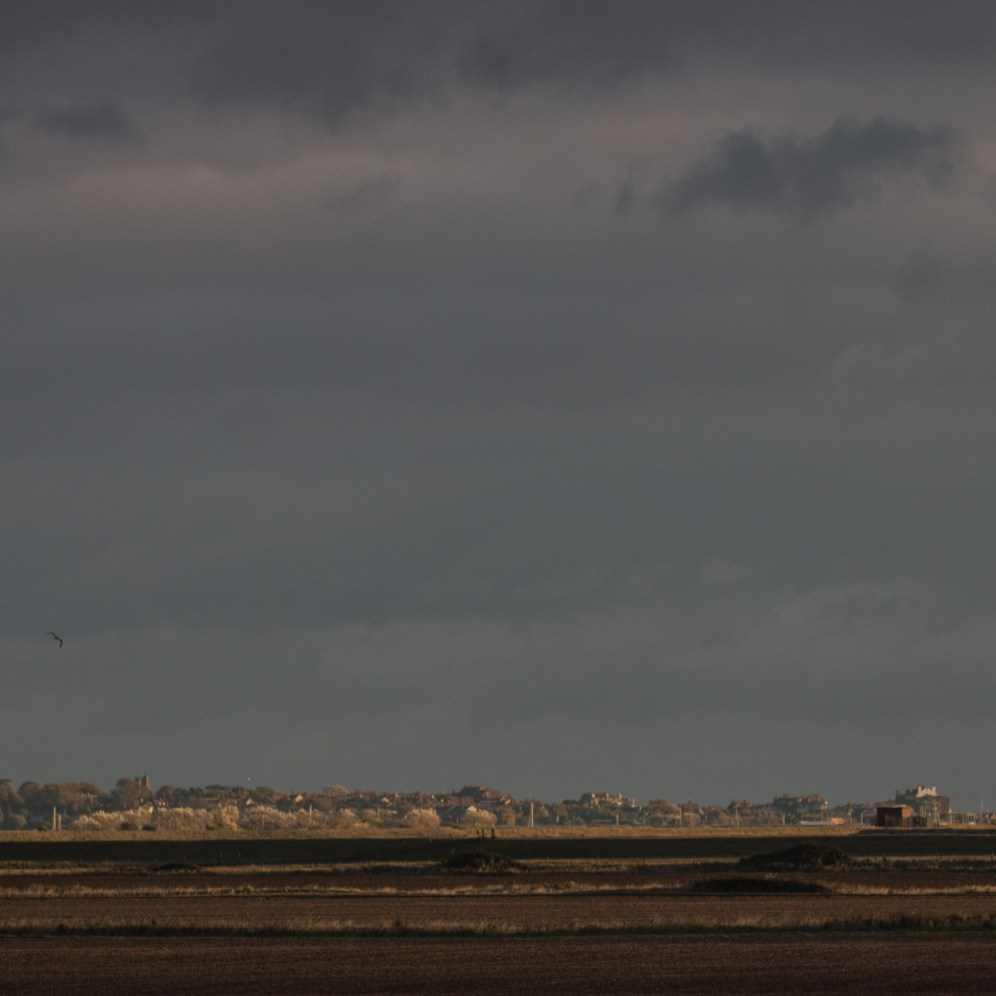 Grazing marshes with Aldeburgh in the distance