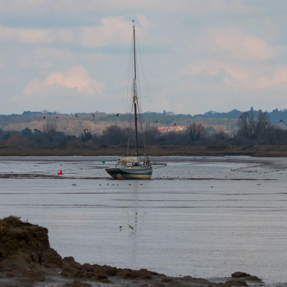 Blackwater estuary scene