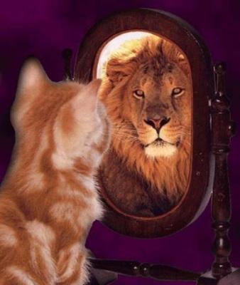 https://i0.wp.com/steveroesler.typepad.com/photos/uncategorized/2007/03/27/lion_2.jpg