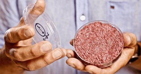 lab grown artificial meat created in labs by government to replace meat