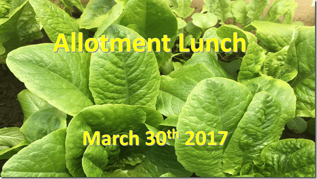 allotment lunch