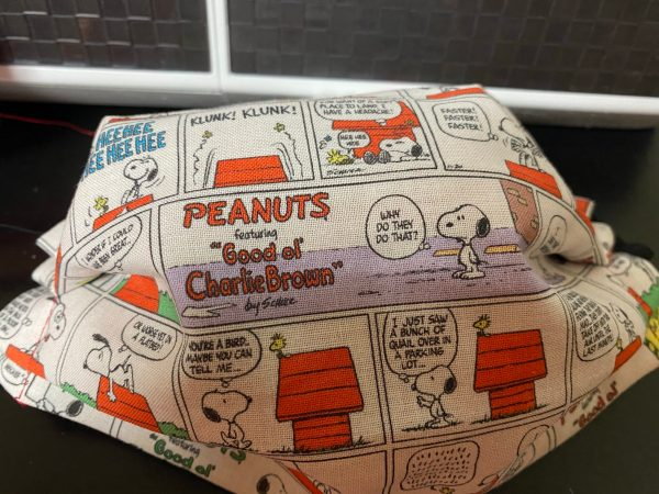 Color Peanuts Comic Face Mask - this face mask has some of the Peanuts comics in color on it. #Peanuts #Snoopy #CharlieBrown