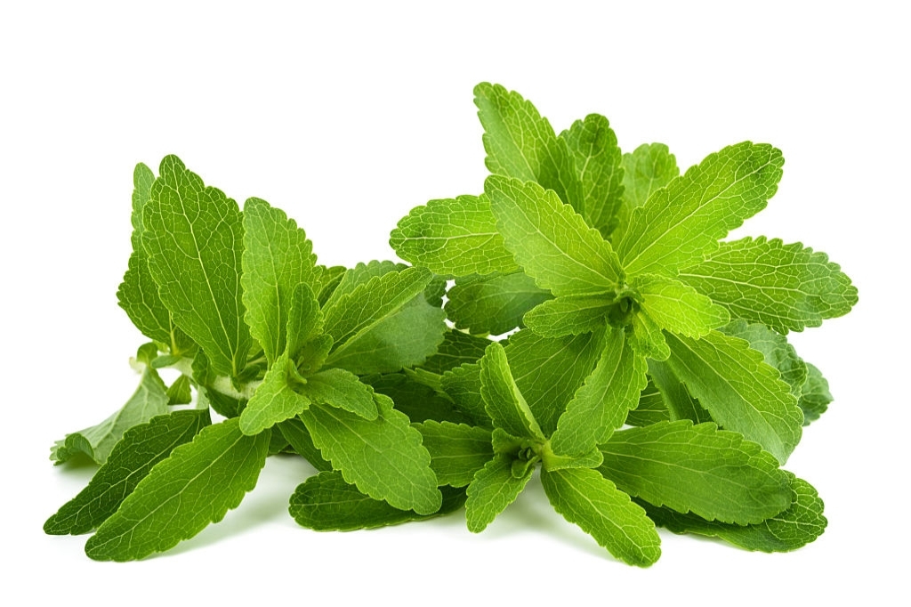 What are the side effects of stevia?