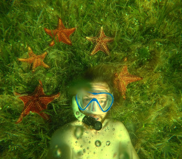 Photo of Stevie Vagabond with star fish in Cuba
