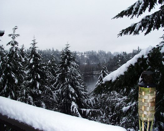Snowy Condo Deck with View