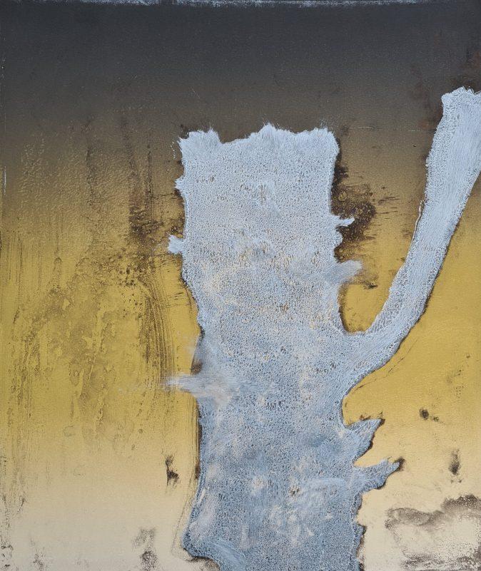 Stump #192 [Gallants Oak], Monoprint, 36cm x 30cm, £130. Dead Oak from Gallants Bower, Dartmouth, which is covered in Ivy & Bracket Fungus