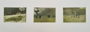 Untitled (#2, Degree Show '94), Photoetching, APs, Not for Sale