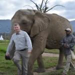 stewiontour_Südafrika2015 (176)
