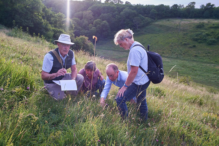 people identifying and documenting plants