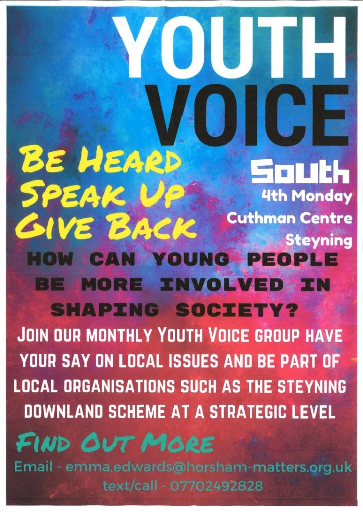 Youth Voice