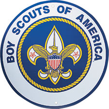 Image result for boy scouts of america badges