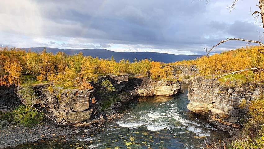 sjö omgiven av höstfärgade löv
