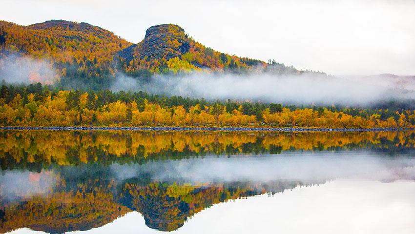 spegelbild på sjön langas