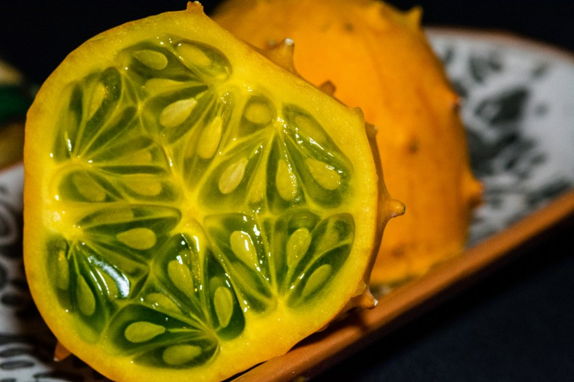 melon-4638-edit