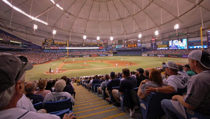 Tampa Bay Rays game view from audience seat
