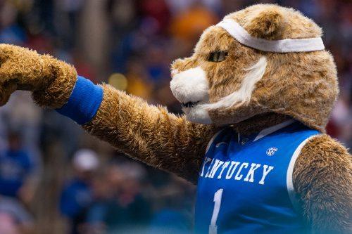 Kentucky Wildcats mascot Scatch