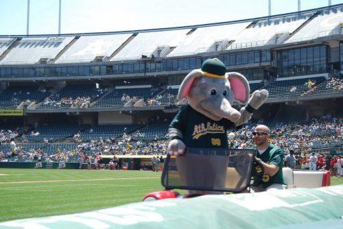 Stomper mascot of Oakland Athletics