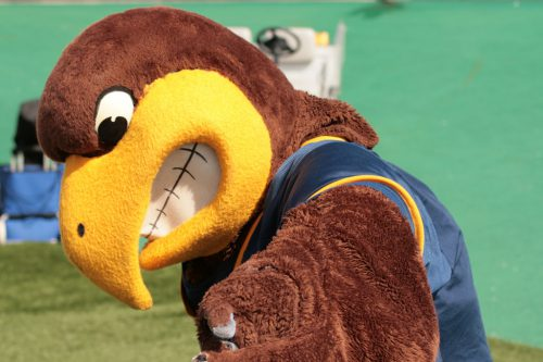 Flash the Golden Eagle mascot Kent State