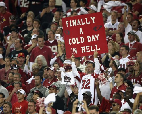 Arizona Cardinals fans cheering at the game