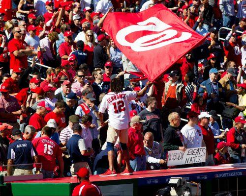 fans at Washington Nationals game