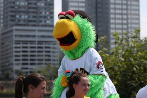 Pirate Parrot mascot Pittsburgh Pirates