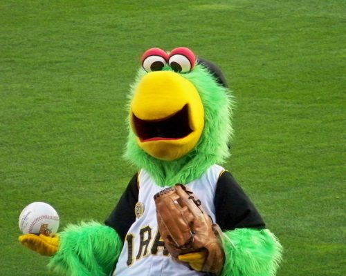 Pittsburgh Pirates mascot Pirate Parrot