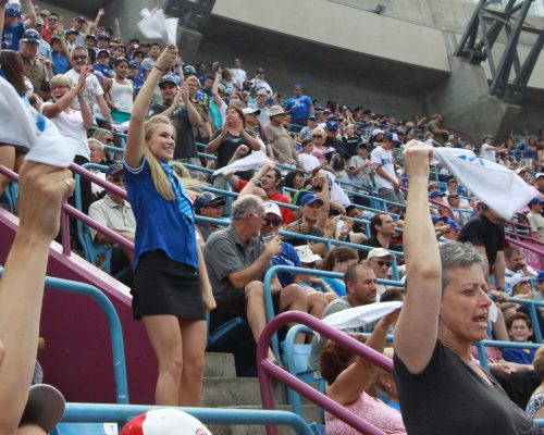 Toronto Blue Jays fans cheering at Rogers Center