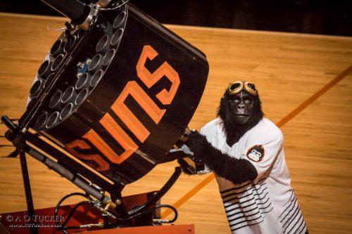 Phoenix Suns gorilla