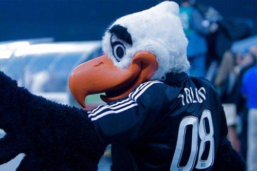 DC United Mascot Talon