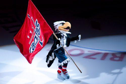 Washington Capitals mascot Slapshot flag