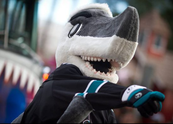 San Jose Sharks toy