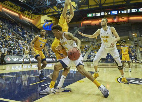 Cal Golden Bears Basketball